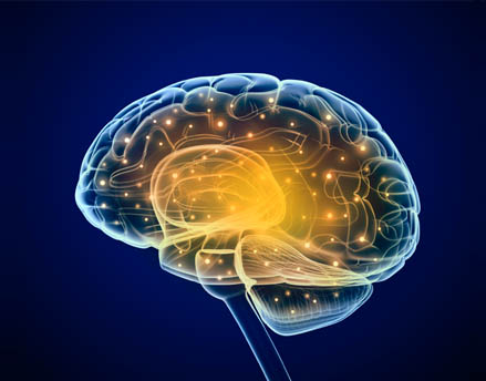 Sharpen your brain with Neuroscience